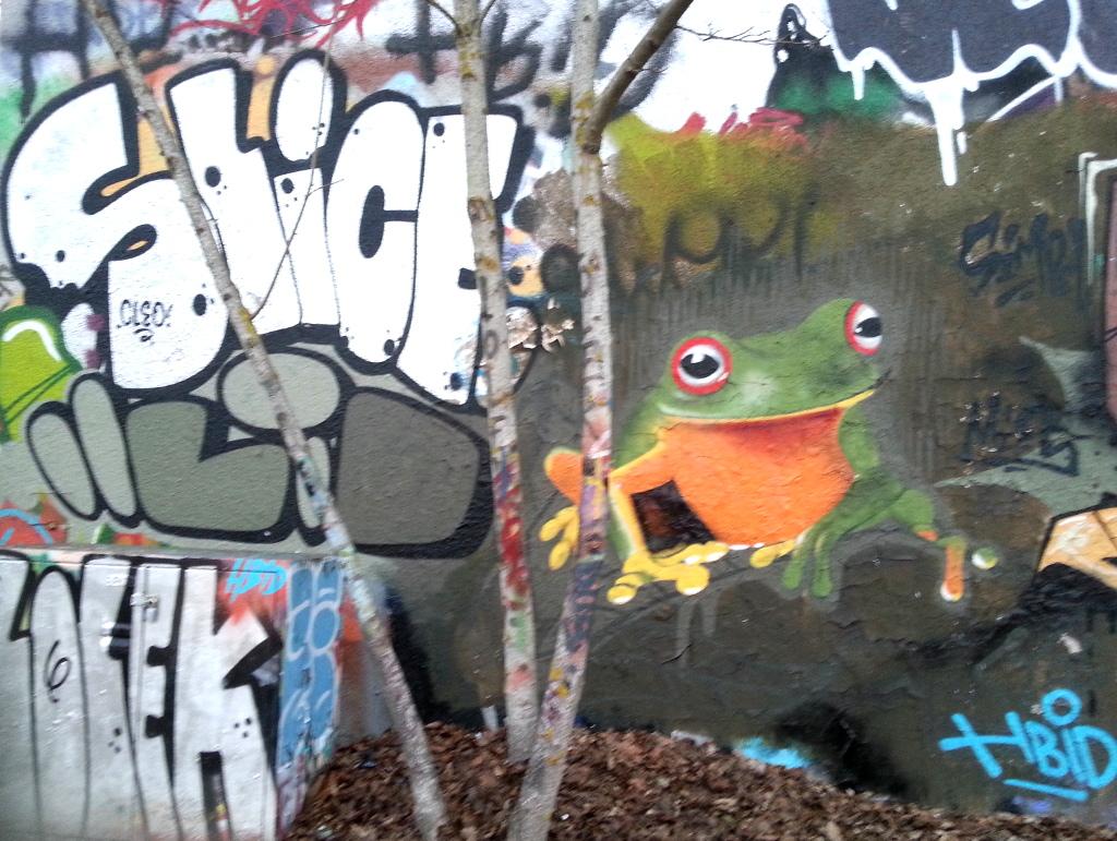 Grafitti Laubfrosch hinterm Roxy Ulm