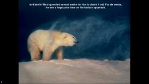 Norbert Rosing - Churchill Monitoba - Polar Bears play with Dogs - Screenshot from 2016-03-30 12:08:24