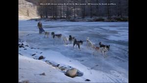 Norbert Rosing - Churchill Monitoba - Polar Bears play with Dogs - Screenshot from 2016-03-30 12:08:29