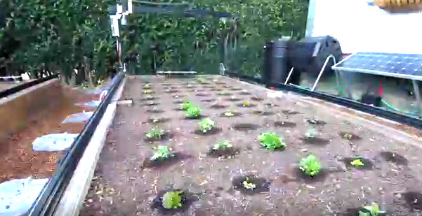 farmbot.io1