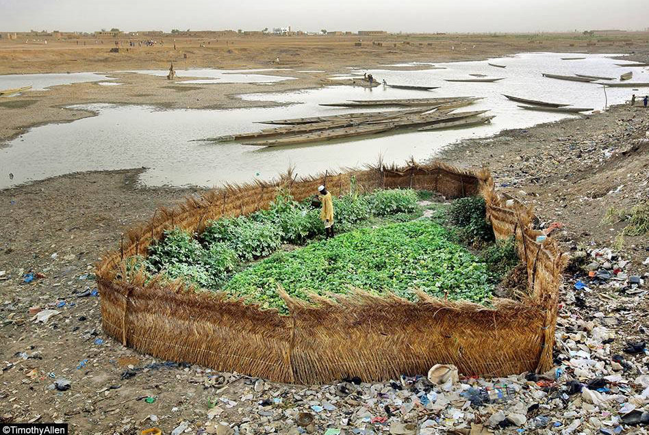 smal-scale-farmer-in-trash