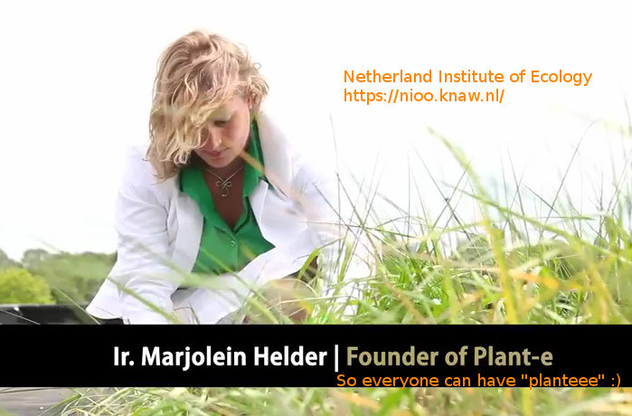 marjolein-helder-first-green-electricity-roof-netherland-institute-of-ecology