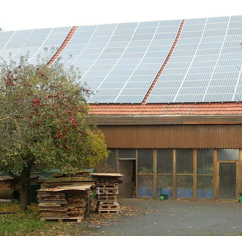 gewaechshausstadel-solar-stadel-mit-apfelbaum-in-front