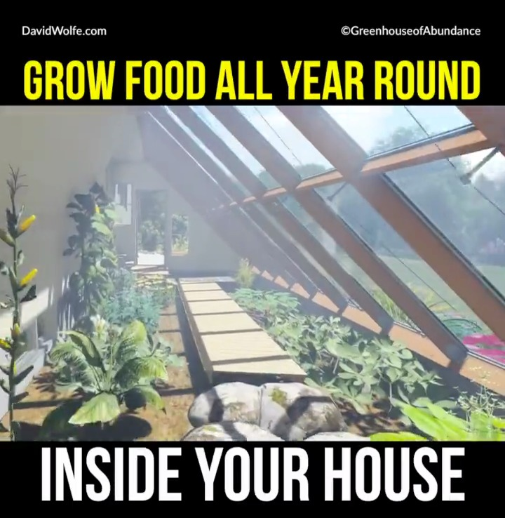 grow-food-all-year-around-attached-greenhouse-vlcsnap-2016-11-22-12h28m34s957