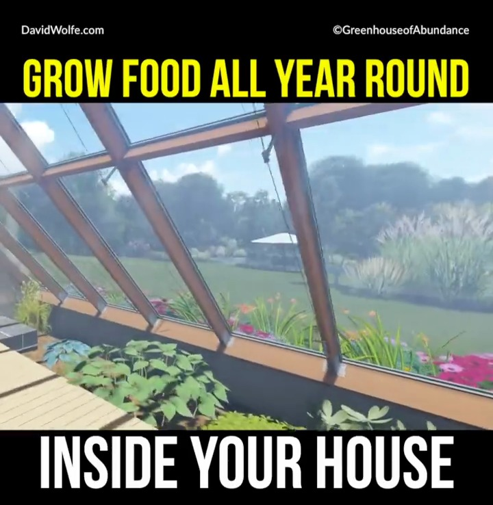 grow-food-all-year-around-attached-greenhouse-vlcsnap-2016-11-22-12h28m39s620