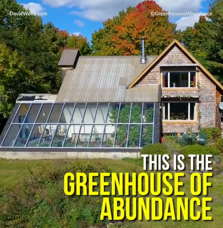 grow-food-all-year-around-attached-greenhouse-vlcsnap-2016-11-22-12h28m48s102